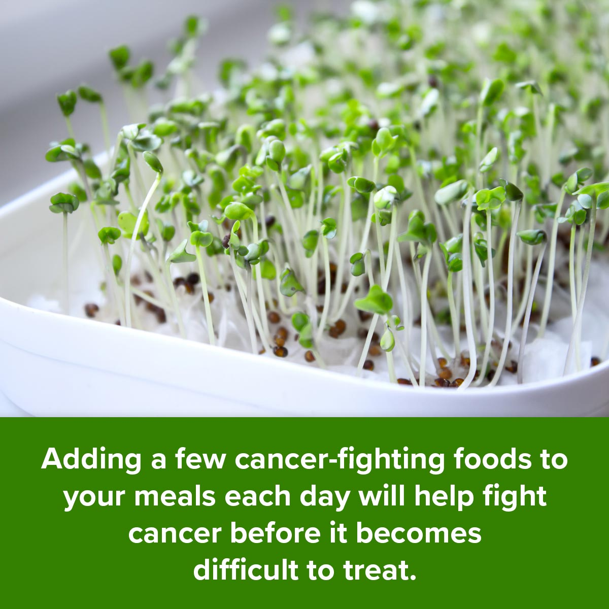 Adding a few cancer-fighting foods to your meals each day will help fight cancer before it becomes difficult to treat.