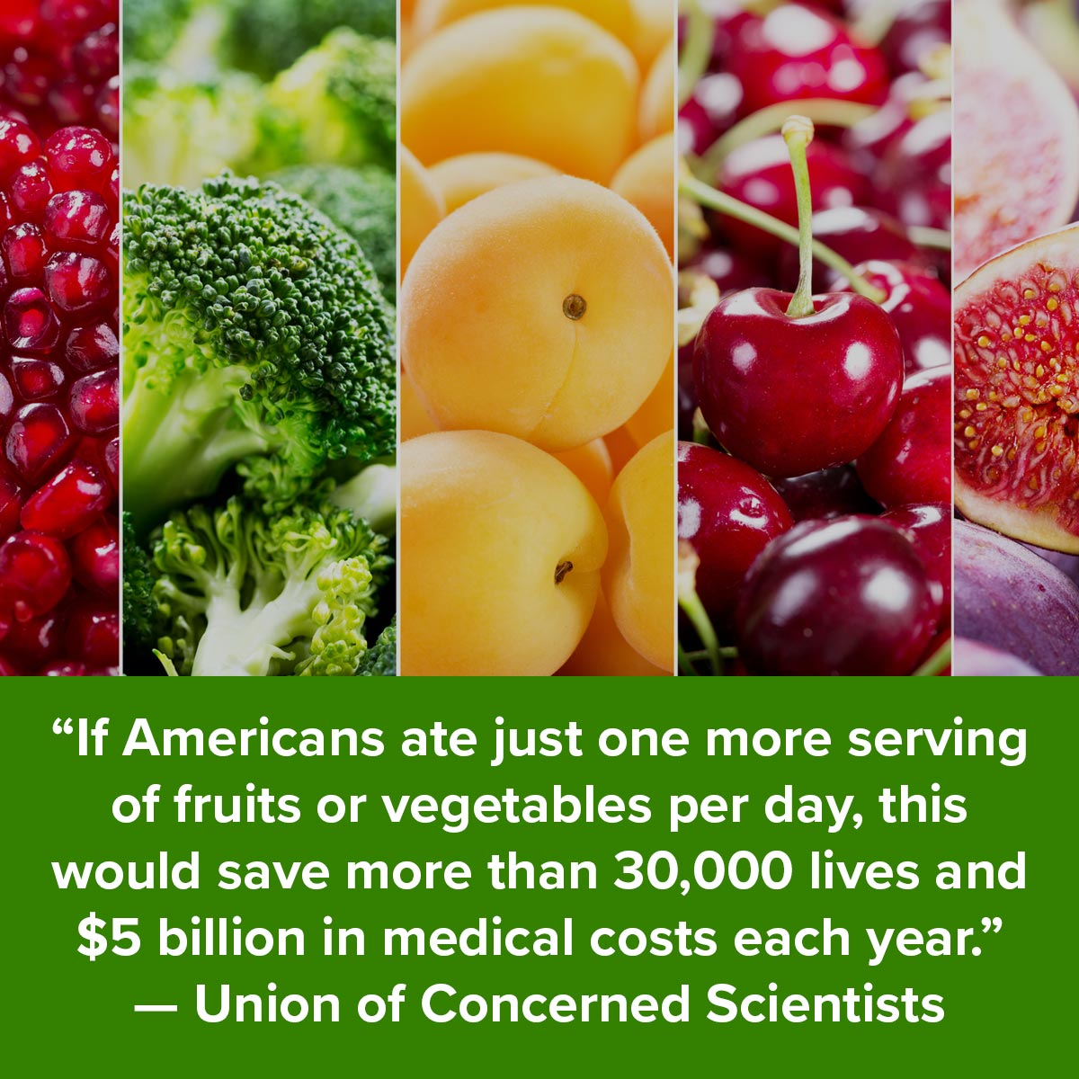 If Americans ate just one more serving of fruits or vegetables per day, this would save more than 30,000 live and $5 billion in medical costs each year - Union of Concerned Scientists