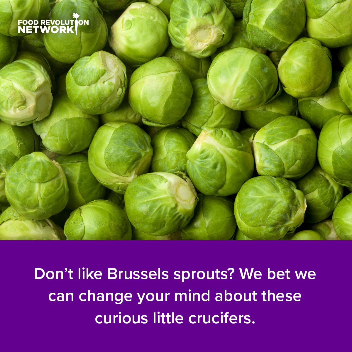 Don't like Brussels sprouts? We bet we can change your mind about these curious little crucifers.