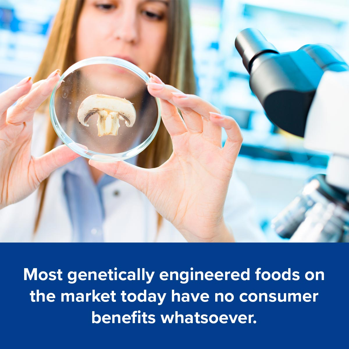 Most genetically engineered foods on the market today have no consumer benefits whatsoever.