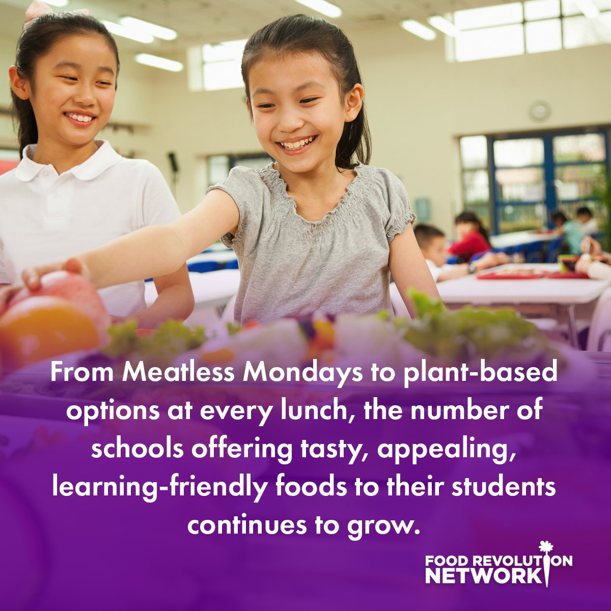From Meatless Mondays to plant-based options at every lunch, the number of schools offering tasty, appealing, learning-friendly foods to their students continues to grow.
