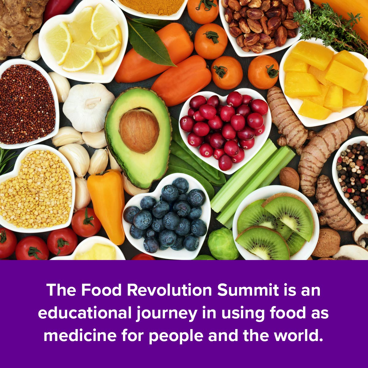 The Food Revolution Summit is an educational journey using food as medicine for people and the world.
