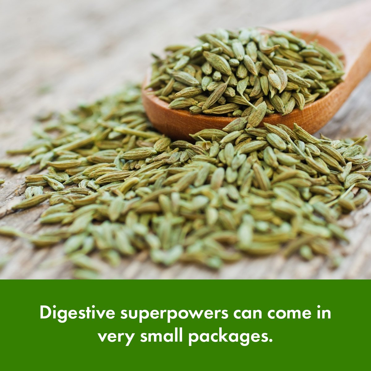 Digestive superpowers can come in very small packages.