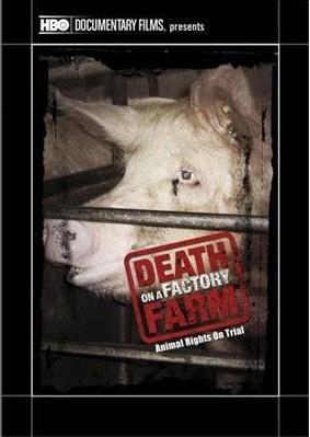 death-on-a-factory-farm-e1361671995821