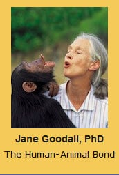 Jane Goodall, PhD The Human-Animal Bond