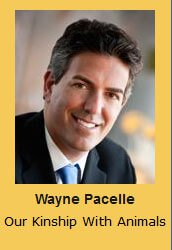 Wayne Pacelle Our Kinship With Animals