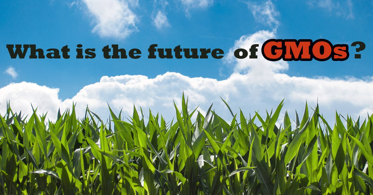 What is the future of genetically engineered crops?