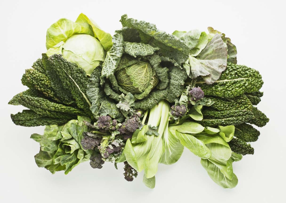 Types of different leafy greens