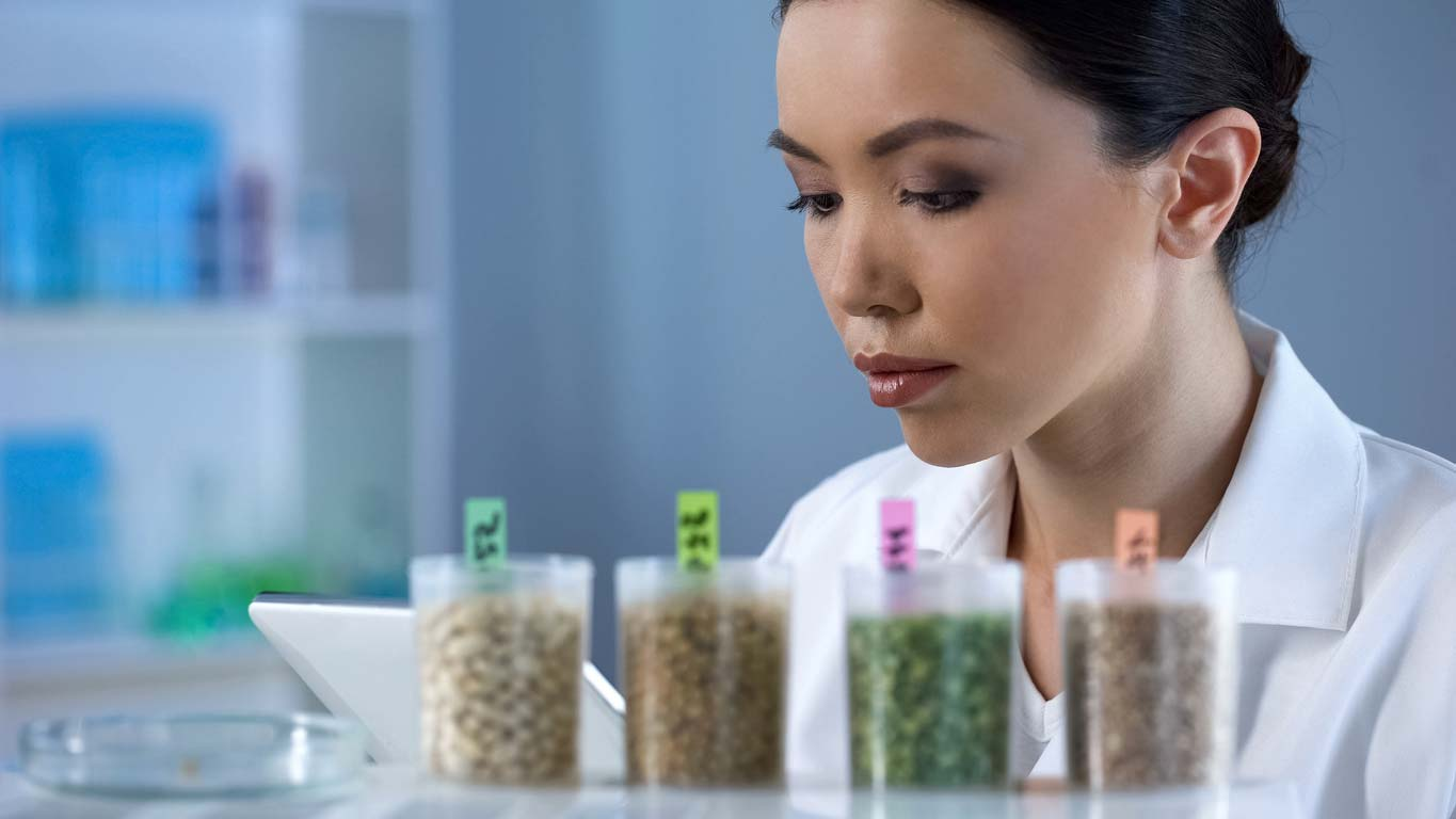 biologist making notes while inspecting legumes and grains