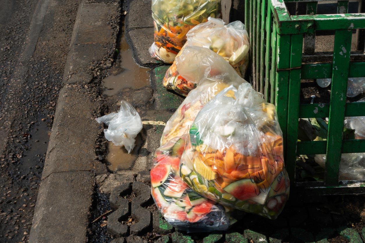 food waste in plastic bag