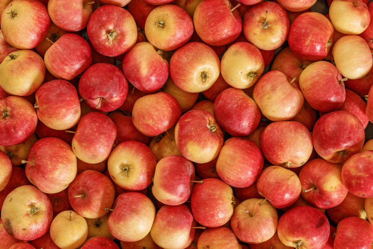 Dirty Dozen - Apples