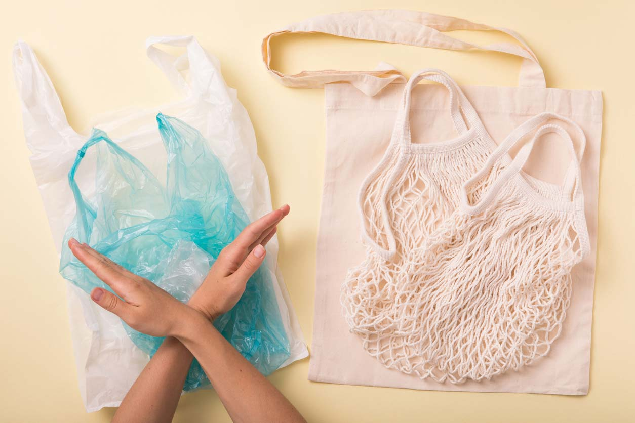 plastic vs non-plastic, cotton grocery bags