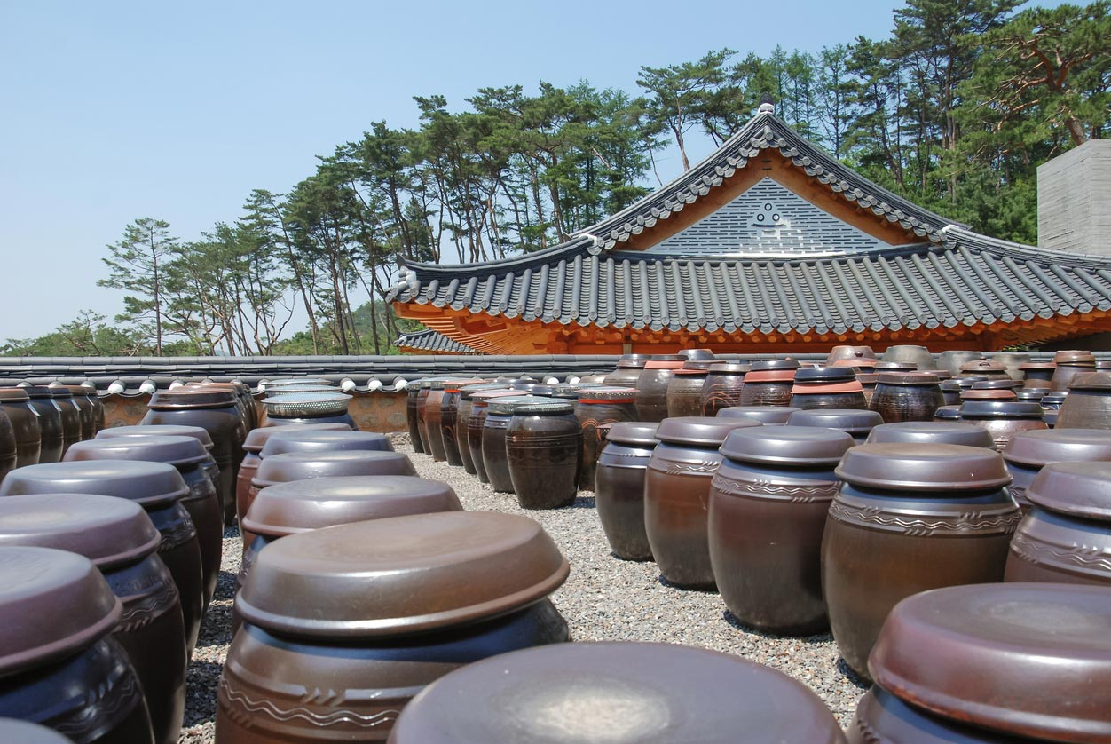 large clay pots holding fermenting kimchi