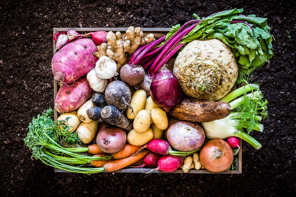 Root vegetables in a produce box