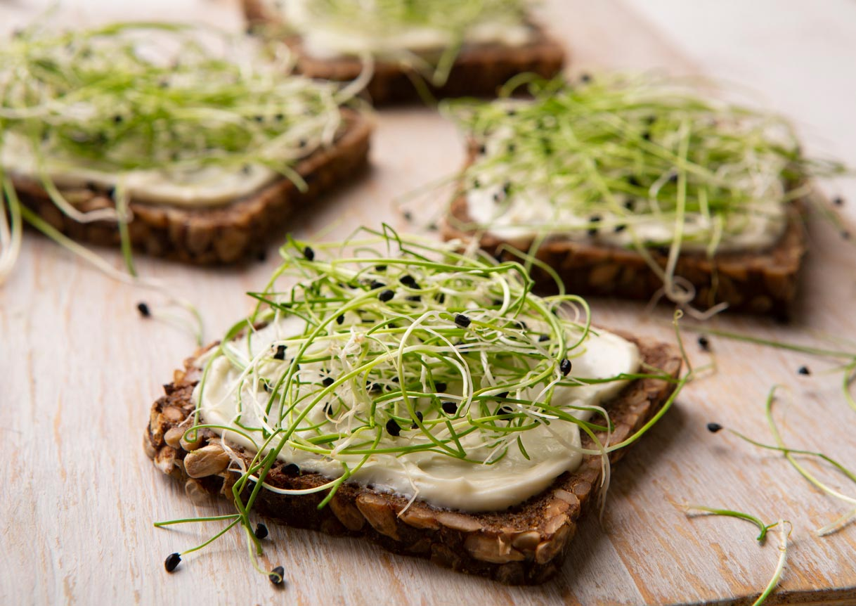 sprouts on vegan sandwich