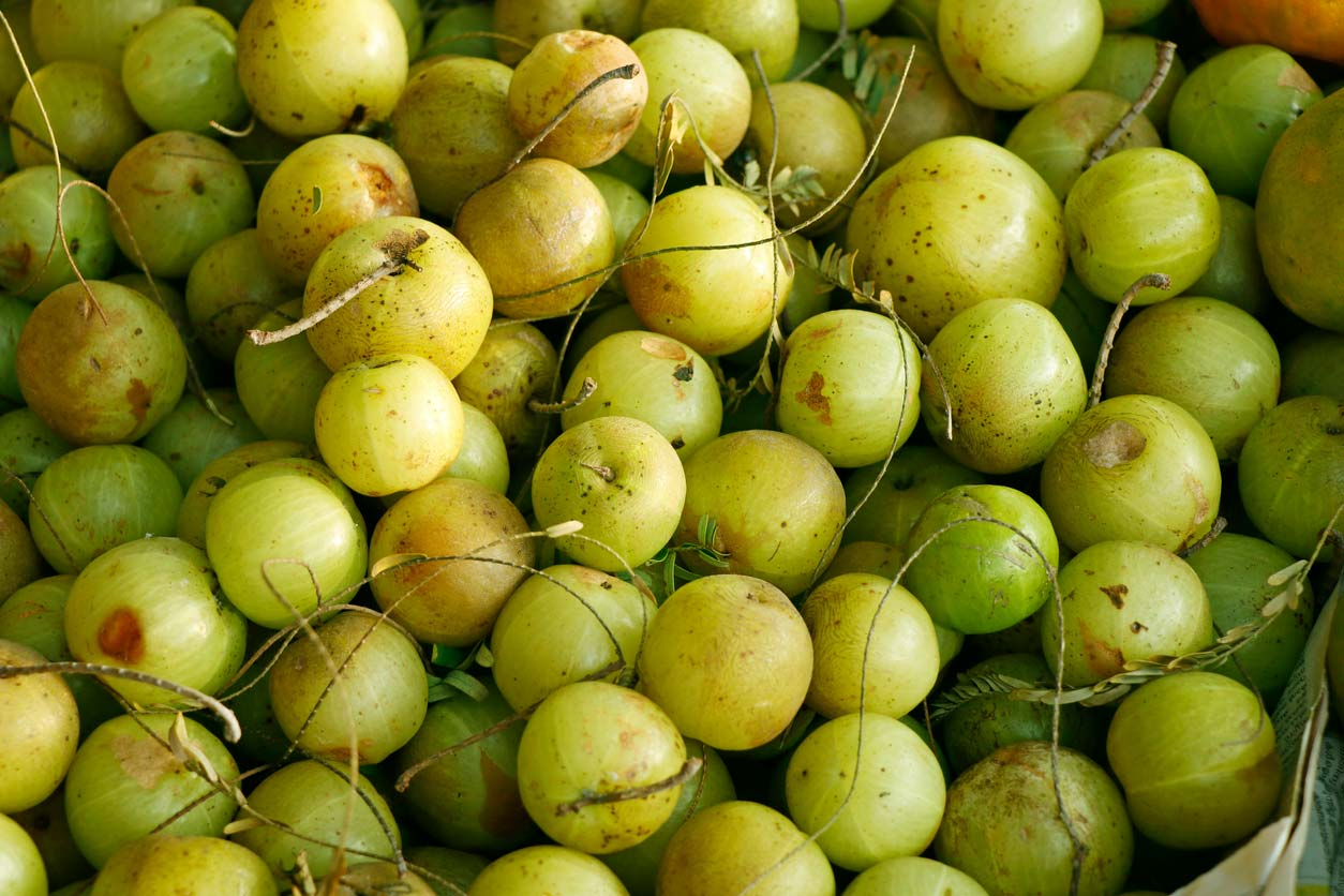 Indian gooseberry, a clean skincare ingredient