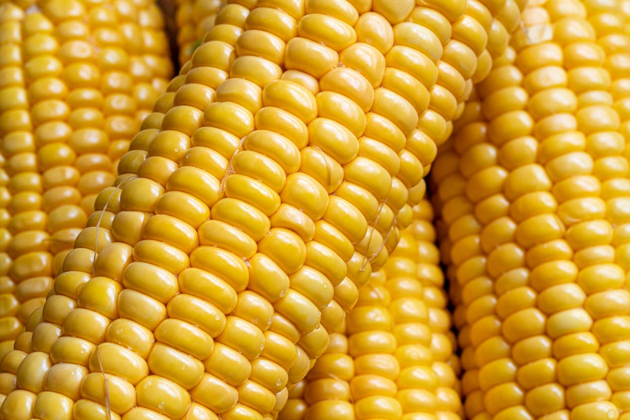 Clean 15 - Sweet corn
