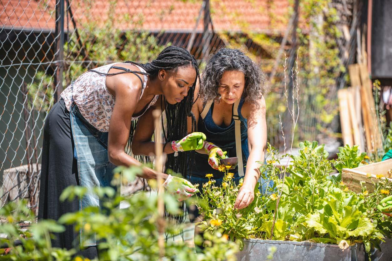 two women working in rooftop garden