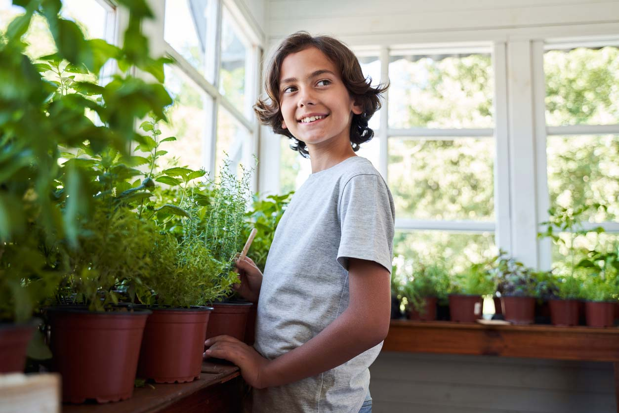Child caring for an indoor garden