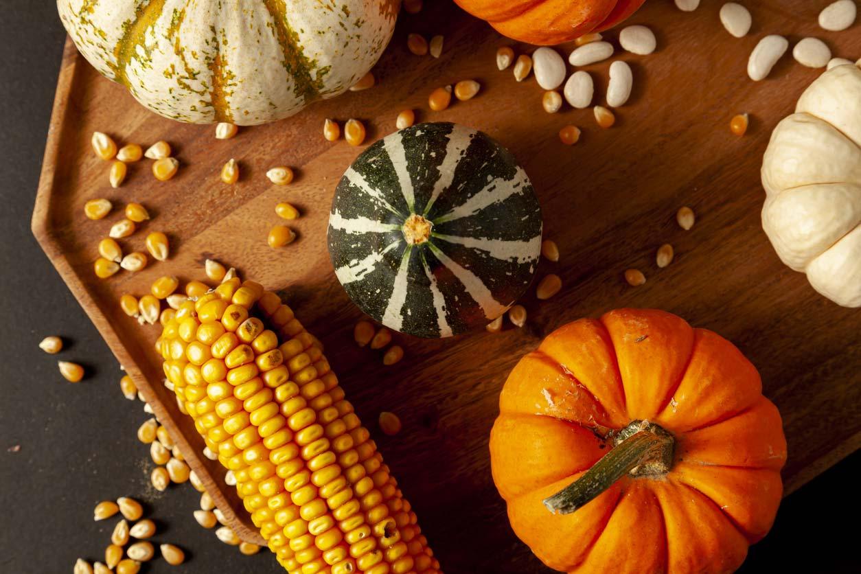 Three sisters crops: Corn, Bean, and Squash