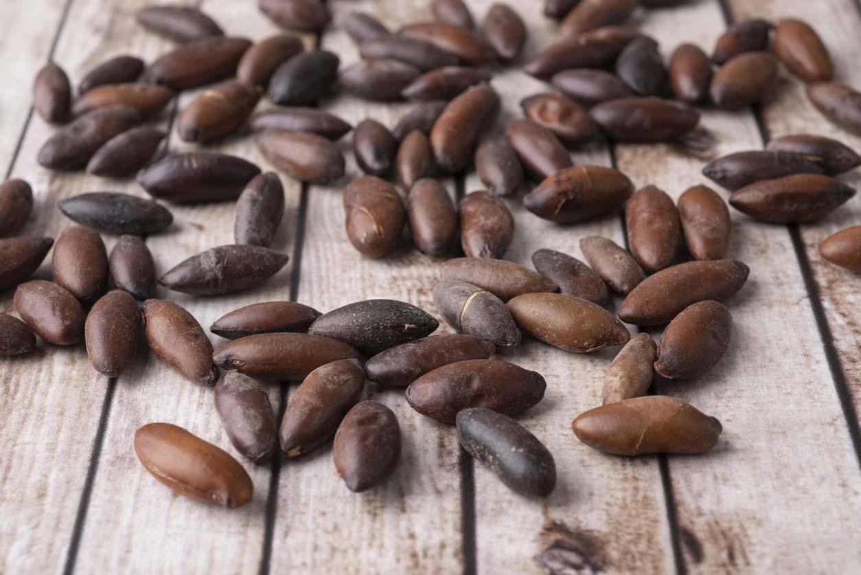 brazilian baru nuts on wooden table