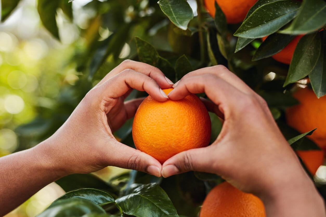 she loves her oranges