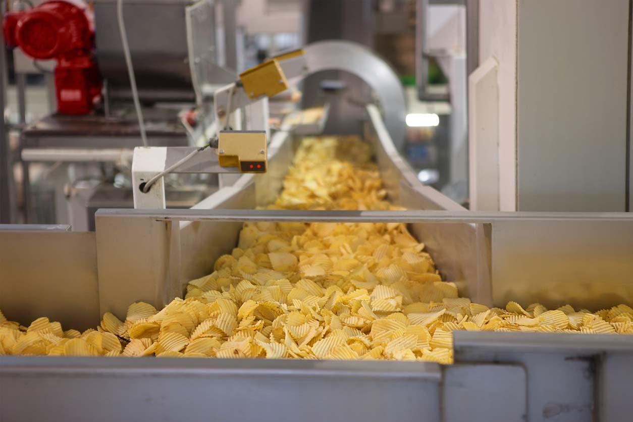 potato chips on conveyor belt