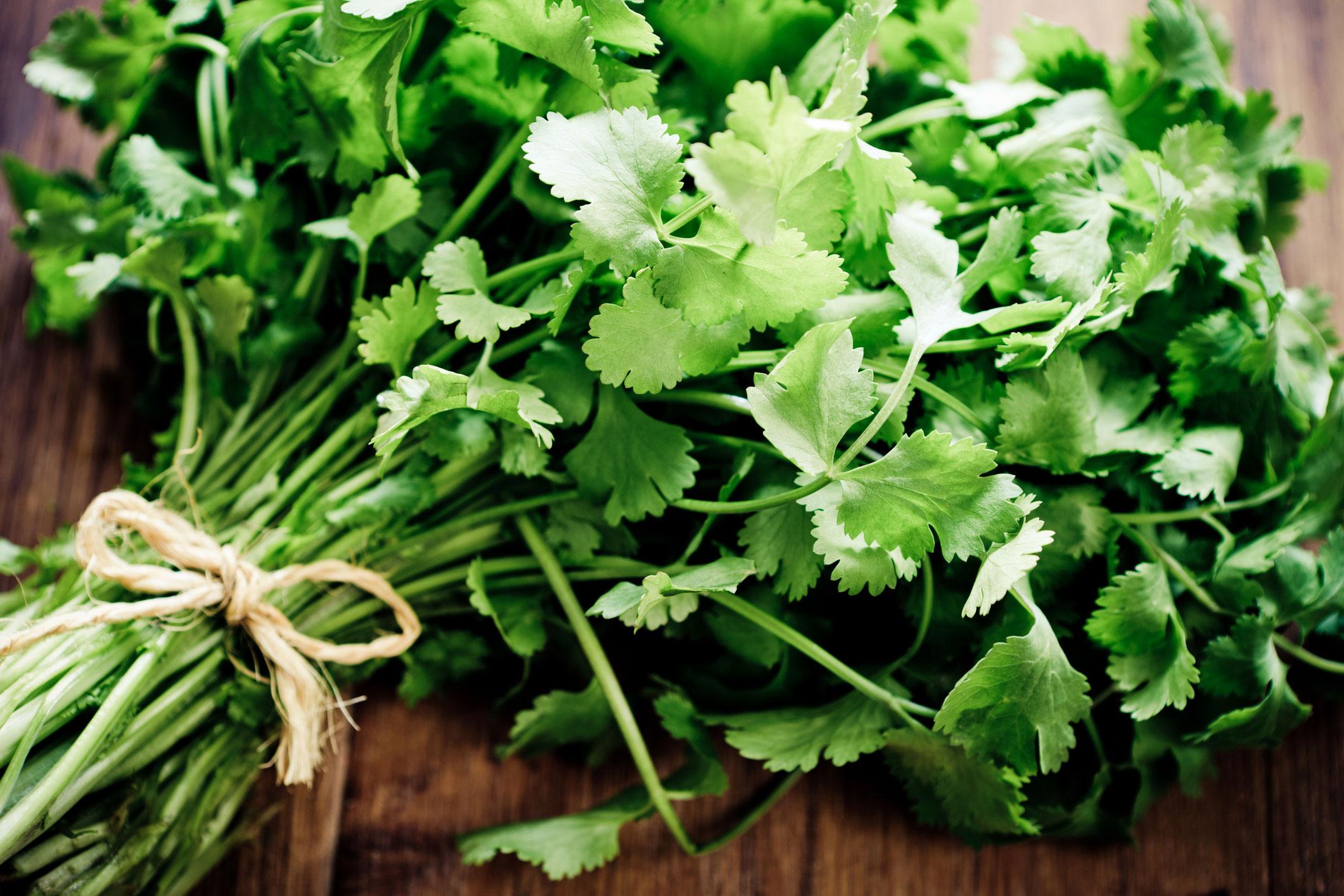 Top heart healthy foods: coriander