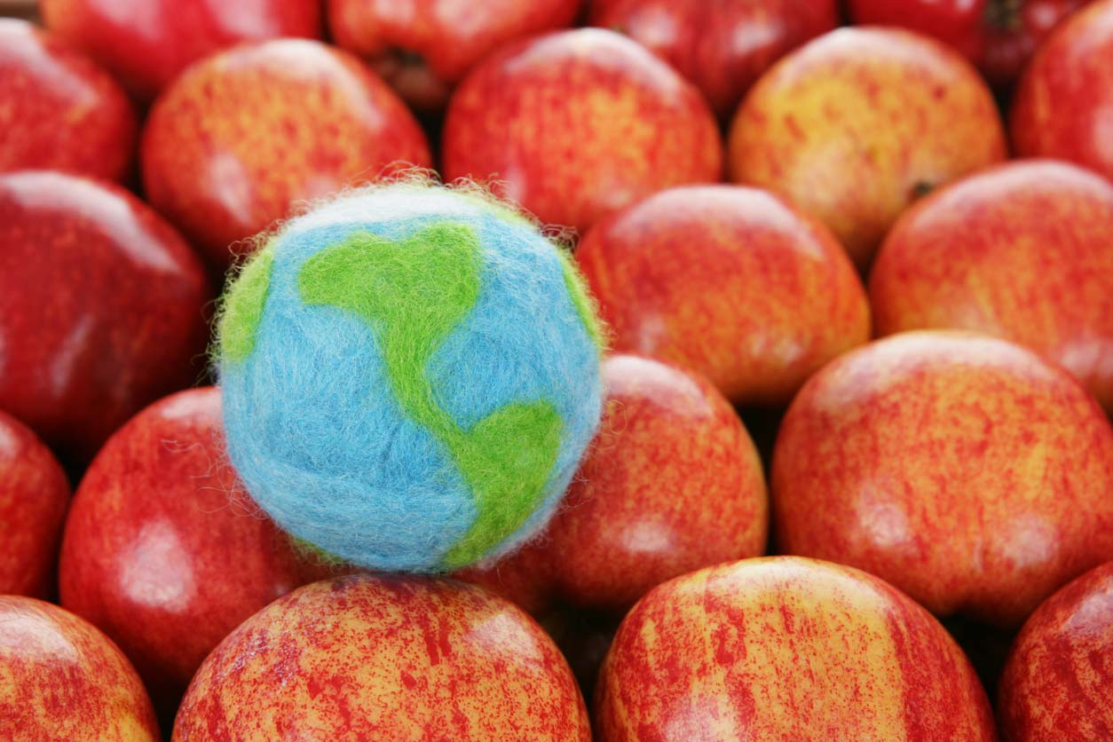 felted globe with apples