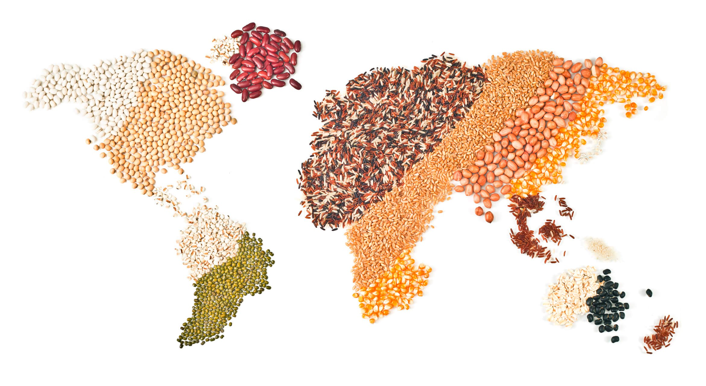 World map made out of grains and legumes
