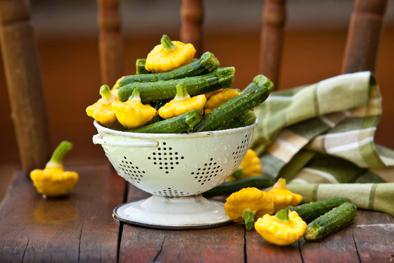 Zucchini and patty pan squash have lots of health benefits