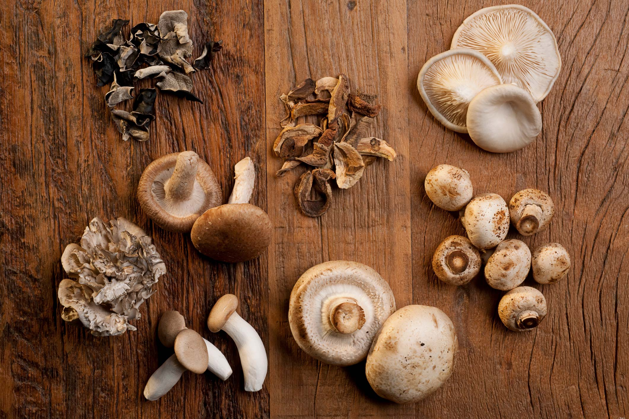 The Power of Mushrooms: Nutrition, Benefits, Risks of Edible Mushrooms