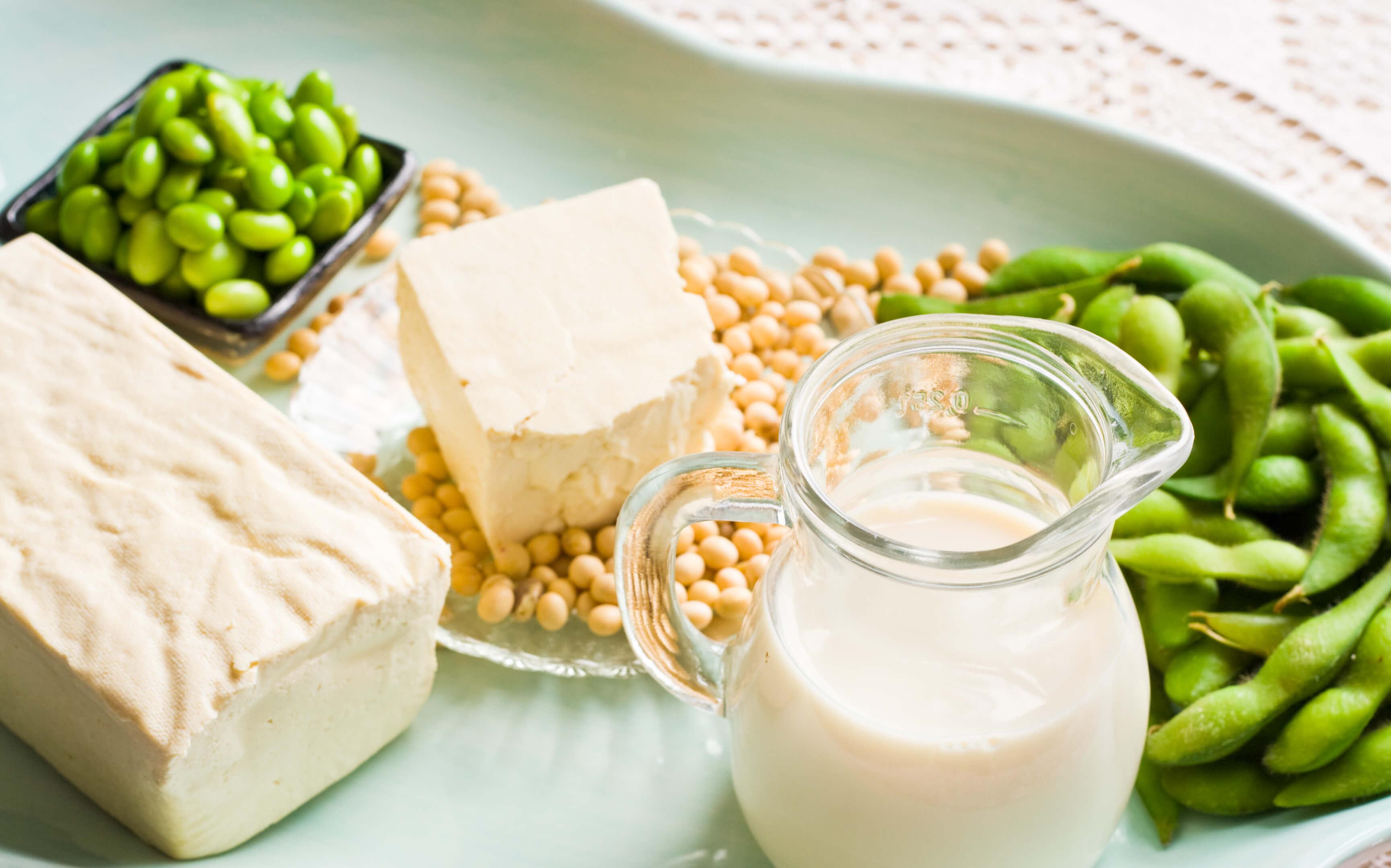 Bean protein
