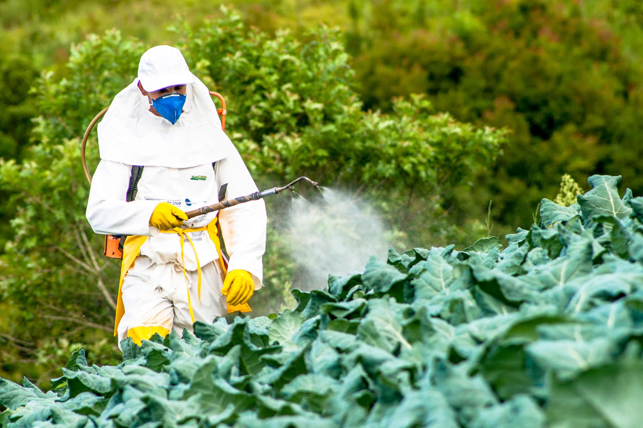 Man spraying pesticides on crops