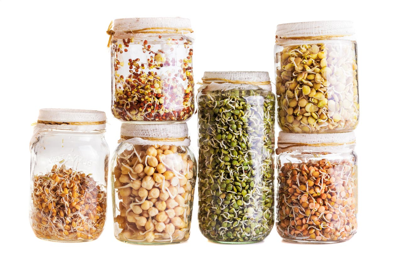 variety grains in jars
