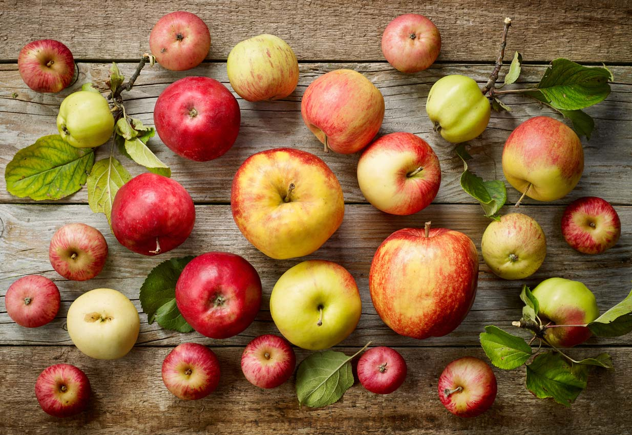 Apple facts: There are over 7,000 varieties of apples
