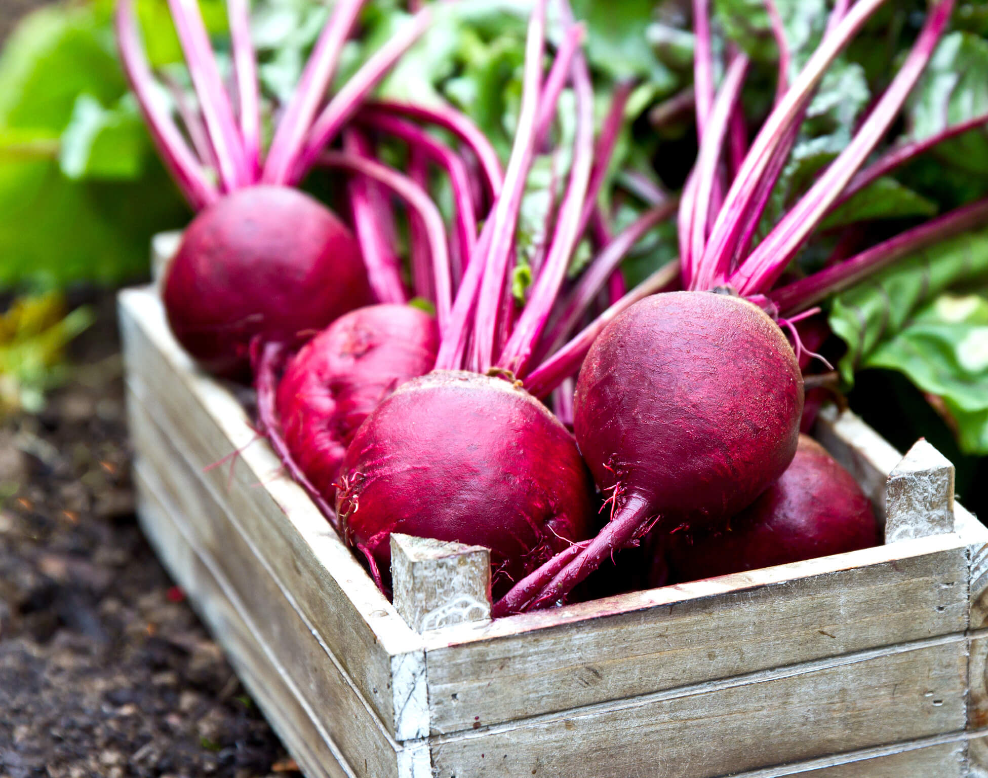 Benefits of beets: 10 reasons to eat more beets