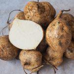 Jicama, Mexican Yam, Mexican Turnip, Pachyrhizus erases