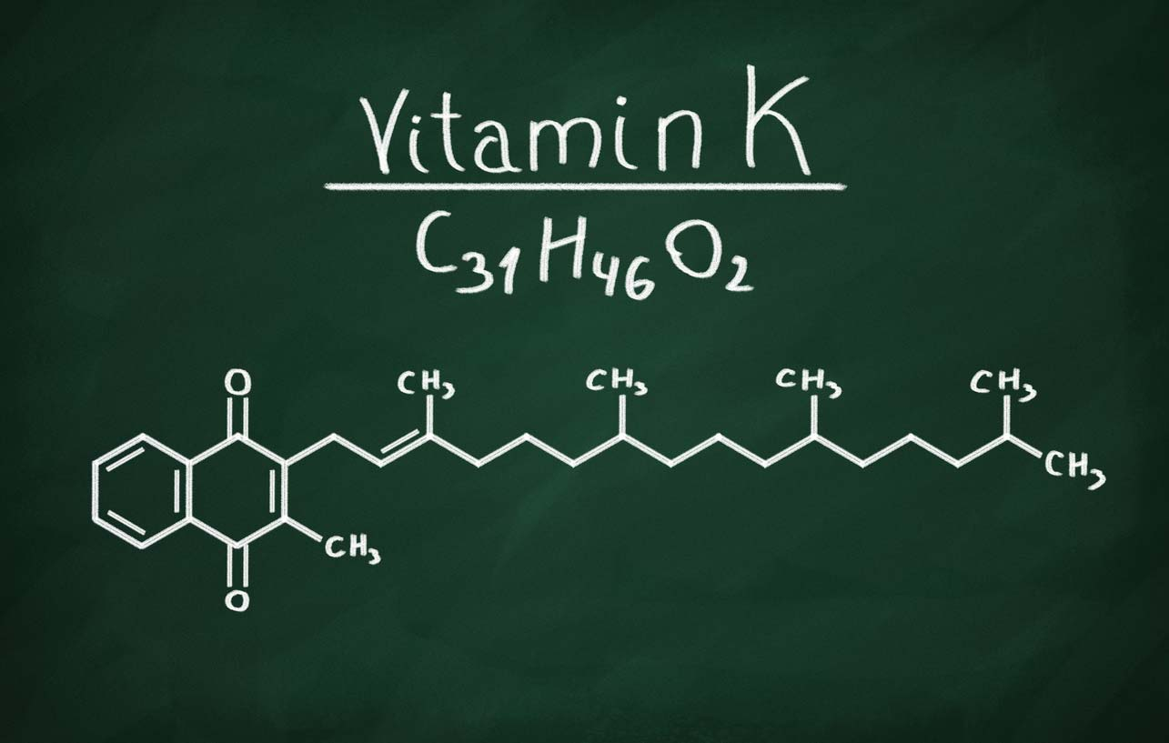 structural model of vitamin k