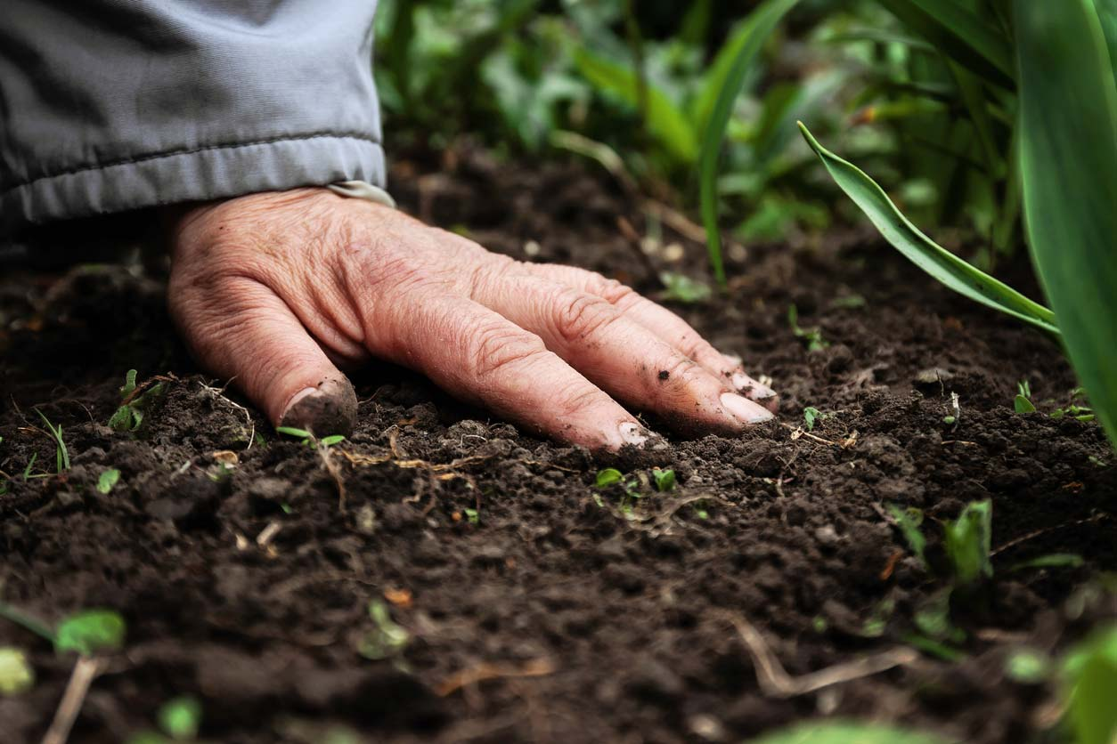 close up of hand on soil
