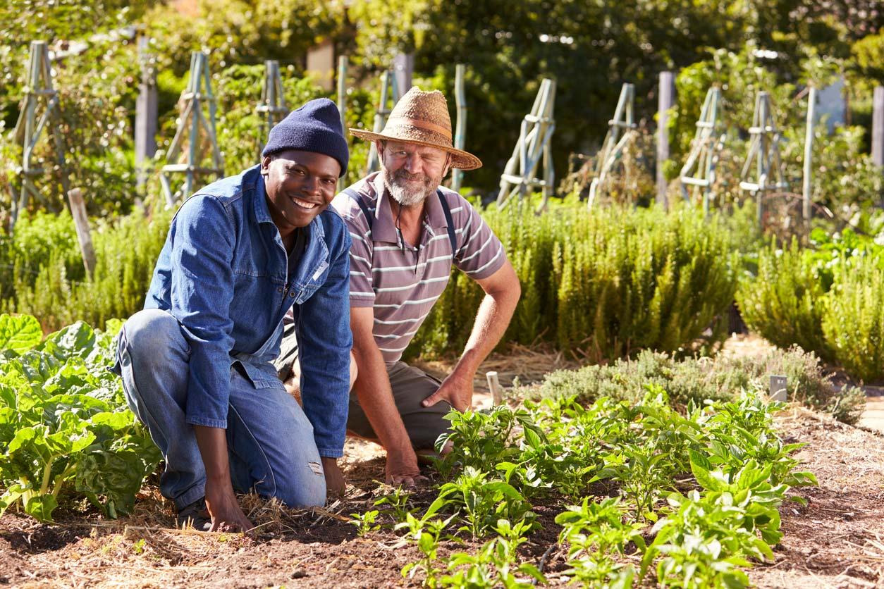 two men working together in community garden