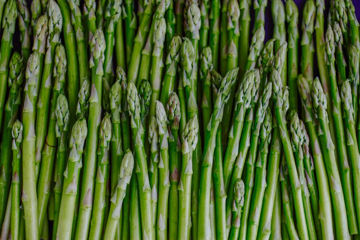 Clean 15 - Asparagus