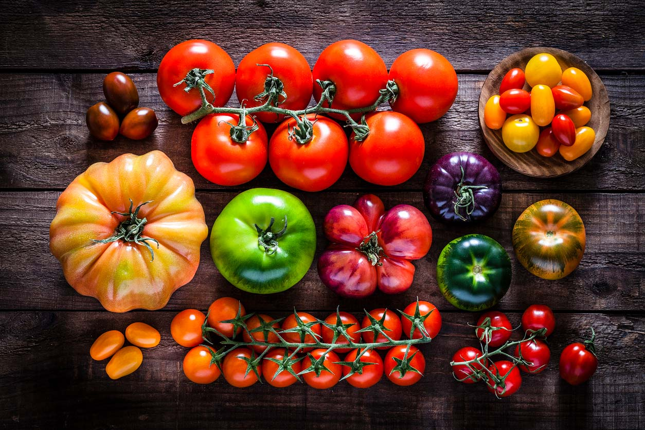 variety of tomatoes on table