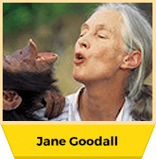 Jane Goodall, Ph.D., DBE – Sowing the Seeds of Hope