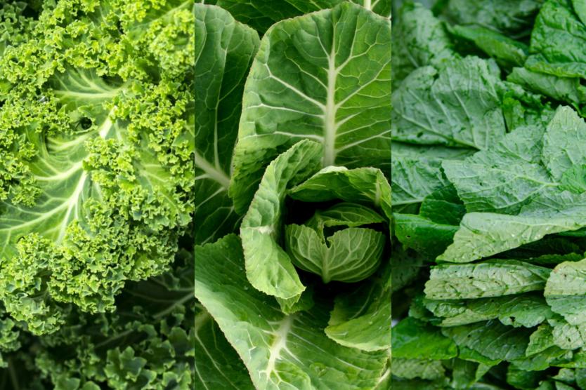 Kale Collard Greens and Mustard Greens