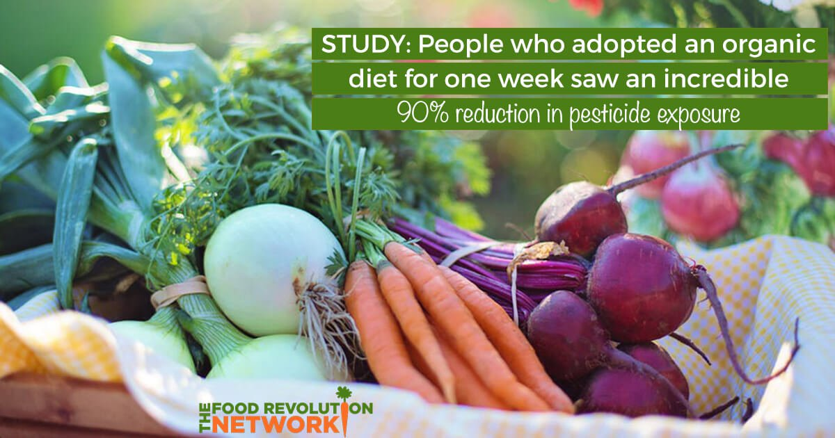 Study: Eating An Organic Diet Found to Reduce Pesticide Exposure in Adults by 90% in 1 Week