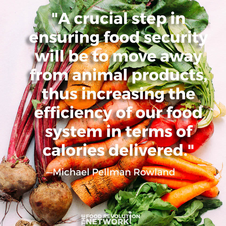 Quote about how moving towards plant-based eating will improve food security