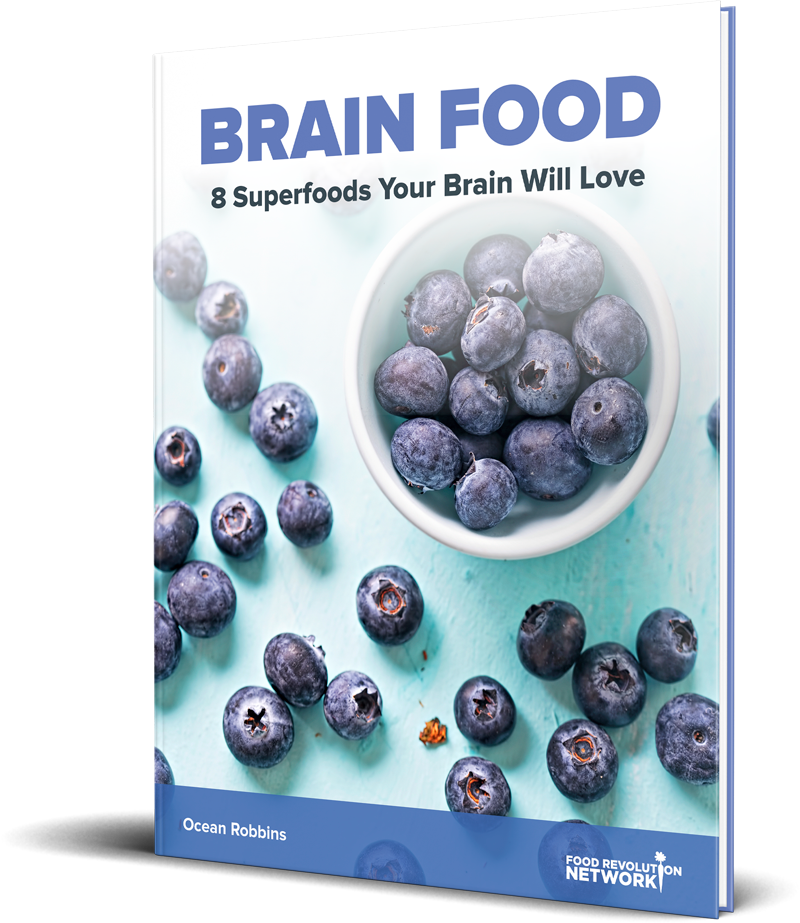BRAIN FOOD 8 Superfoods Your Brain Will Love book cover