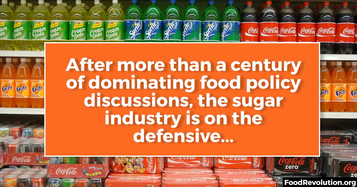 Sugar industry in the us
