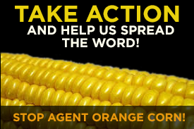 take-action-corn-spread